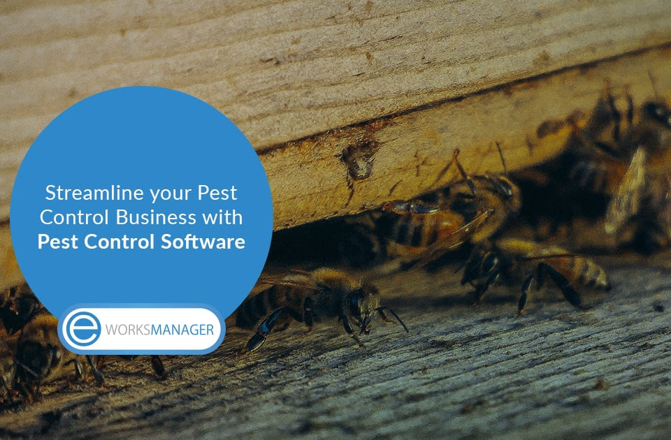 Streamline your Pest Control Business with Pest Control Software
